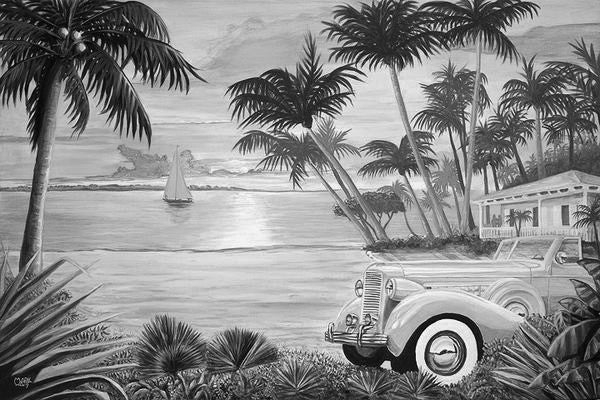 Tropical Getaway Black & White Art: By Artist Mark Watts