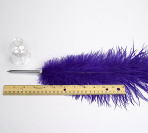Custom Ostrich Feather Ballpoint Pen with Glass Stand