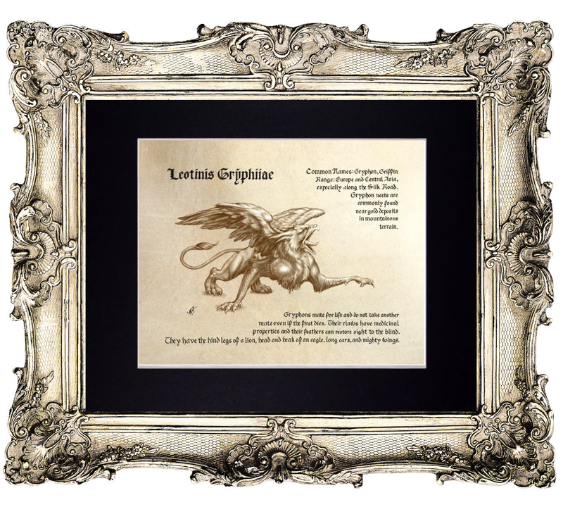 Mythological Beasts: Gryphon Fine Art Print