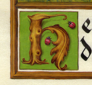 detail illuminated initial H twig with leaf and ladybugs