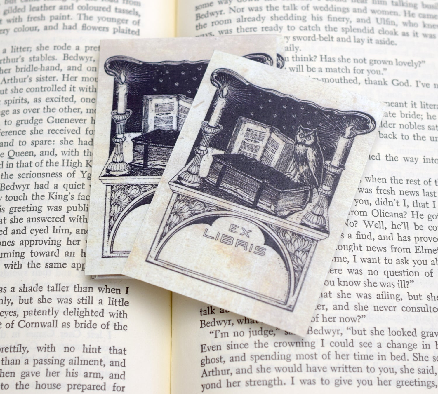 Ex Libris Book Plates with Owl and Candles: Set of 24 Self-Adhesive Labels