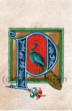Calligraphy print initial letter P is for peacock