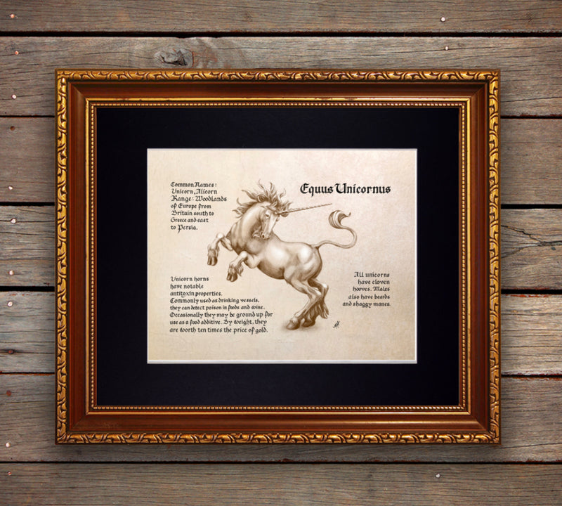 Mythological Beasts: Unicorn Fine Art Print