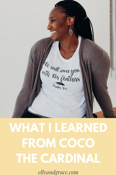 What I learned from Coco the Cardinal