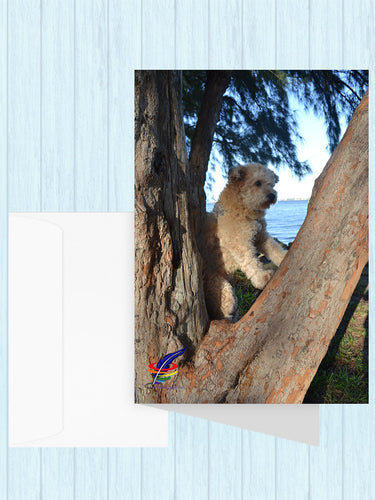 Libby in a Tree Note Cards