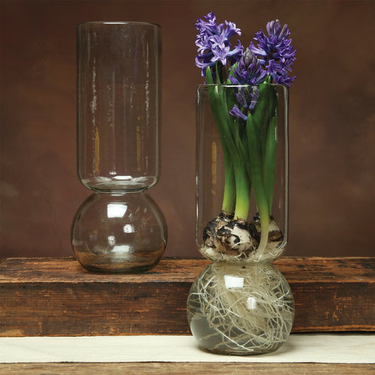 Extra Tall Glass Bulb Vase
