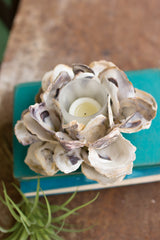 Oyster Shell Flower Votive Set of 2