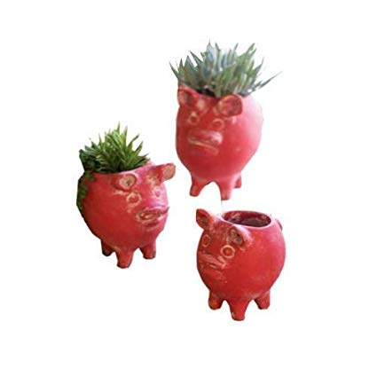 Red clay Pig Planter Set Pig Planter For Succulents
