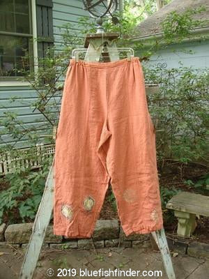 Vintage Blue Fish Clothing 1998 Botanicals Greenhouse Pant Onion Flower Mimosa Size 2- Bluefishfinder.com