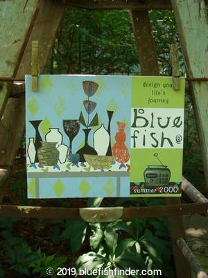 Vintage Blue Fish Clothing 2000 Summer Catalog Life's Journey OS- Bluefishfinder.com