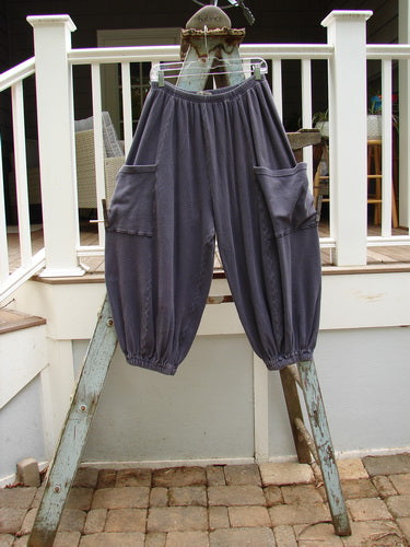 Vintage Blue Fish Clothing Barclay Thermal Side Pocket Crop Antoen Pant Plum Size 2- Bluefishfinder.com