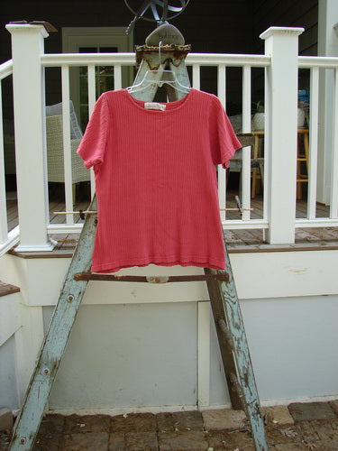 Vintage Blue Fish Clothing 1998 Short Sleeved Rib Undertop Cerise Size 2- Bluefishfinder.com