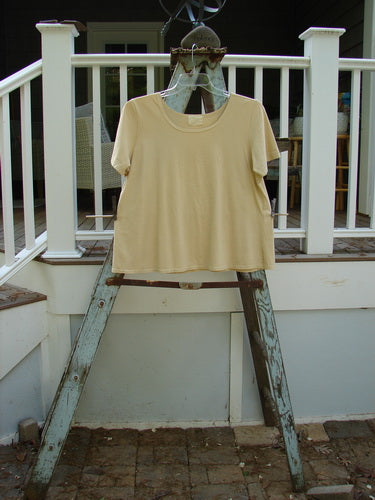Vintage Blue Fish Clothing 1999 Cotton Lycra Short Sleeved A Line Tee Unpainted Plantain Size 2- Bluefishfinder.com