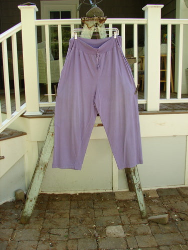 Vintage Blue Fish Clothing 1986 Drawcord Panel Pant Unpainted Lilac OSFA- Bluefishfinder.com