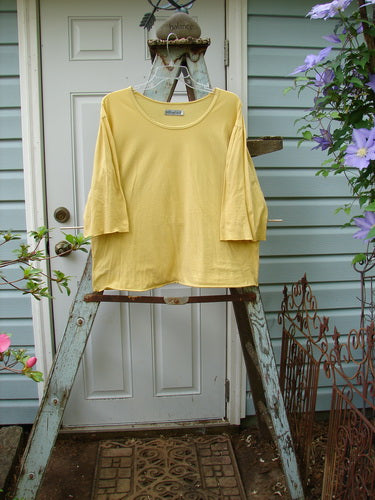 Vintage Blue Fish Clothing Barclay Batiste Ruffle Sleeved Tee Sunshine Size 2- Bluefishfinder.com