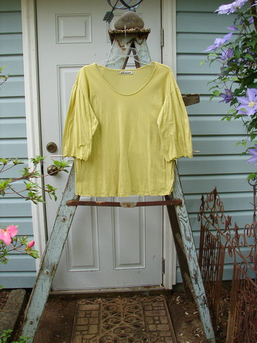 Vintage Blue Fish Clothing Barclay Batiste Ruffle Sleeved Tee Lemon Lime Size 2- Bluefishfinder.com