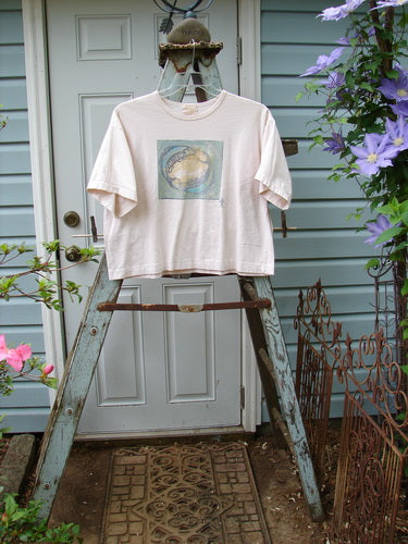 Vintage Blue Fish Clothing 1999 Short Sleeved Crop Tee Pisces Tea Dye Size 1- Bluefishfinder.com