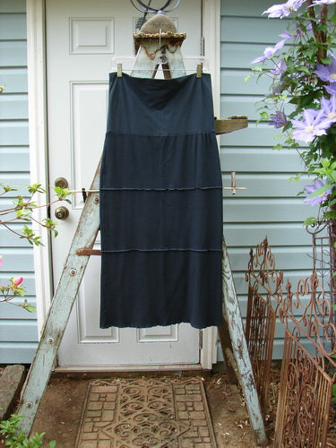 Vintage Blue Fish Clothing Barclay Thermal Fold Over Ruffle Panel Skirt Unpainted Black Size 0- Bluefishfinder.com