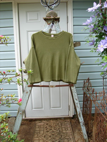 Vintage Blue Fish Clothing Barclay Thermal Box Top Unpainted Sage Size 1- Bluefishfinder.com