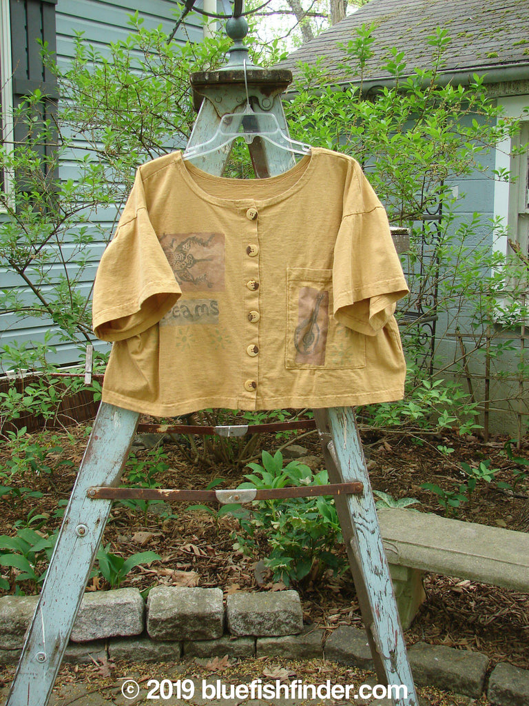 Vintage Blue Fish Clothing 1994 Song Top Dreams Dijon Size 2- Bluefishfinder.com