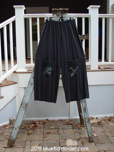 Vintage Blue Fish Clothing 2001 Wishpocket Pant Airplane Licorice Size 1- Bluefishfinder.com