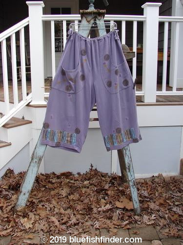 Vintage Blue Fish Clothing 1993 Garden Pant Many Moons Periwinkle Size 2- Bluefishfinder.com