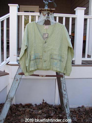 Vintage Blue Fish Clothing 2000 NWT Cross Dye Linen East Side Jacket Hemisphere Celery Size 1- Bluefishfinder.com