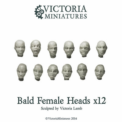 Bald Female Heads x12