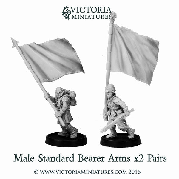 Male Standard Bearer Arms x2