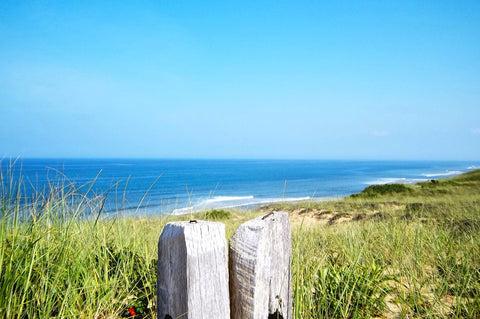 Retreat to Wellfleet