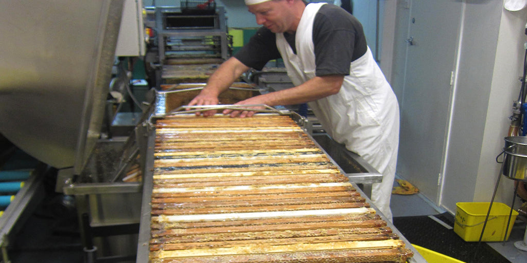 Extraction of manuka honey at avatar honey New Zealand