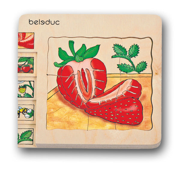 Beleduc 5-in-1 Puzzle Strawberry
