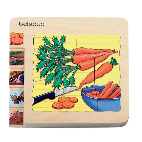 Beleduc 5-in-1 Puzzle Carrots (German Brand)