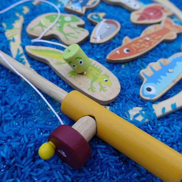 Pond Dipping (Magnetic Fishing Set)