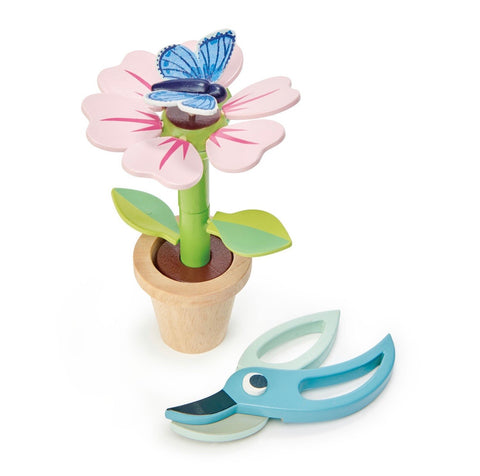 Blossom & Blue Butterfly Flowerpot Kit