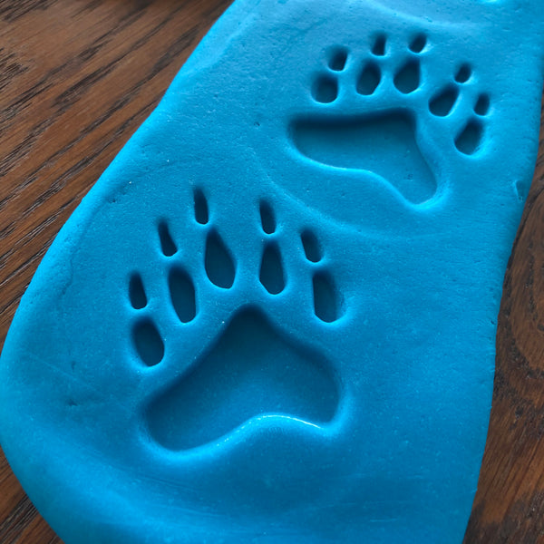 Polar Footprints Sensory Stones (2-sided)