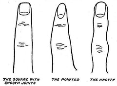 Your Finger shape and what does it say about you