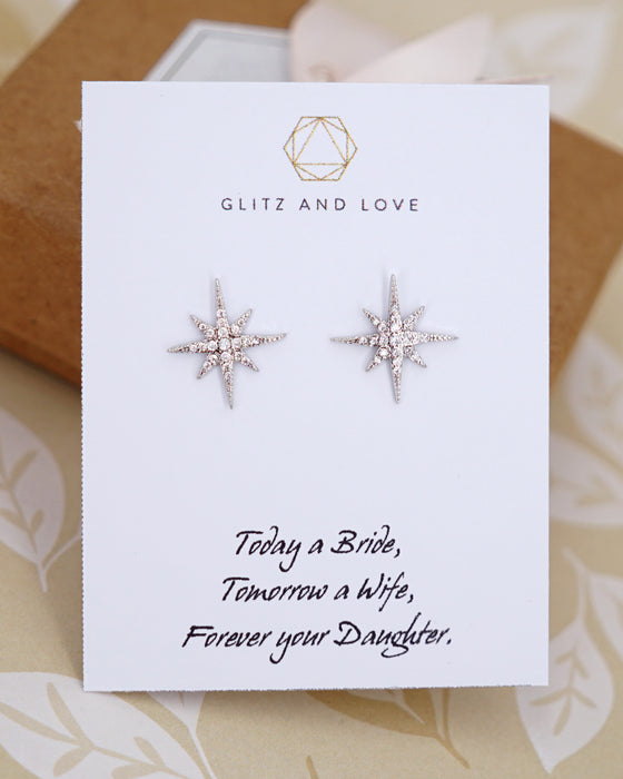 Silver Snowflakes Ear Studs