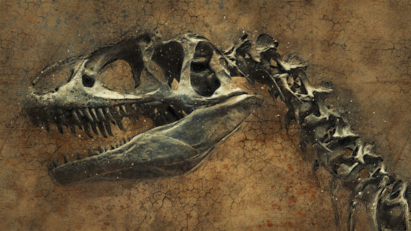 Five Fast Facts about Dinosaurs!