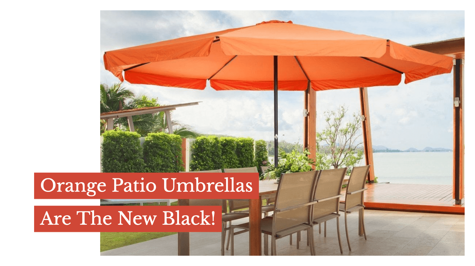 Orange Patio Umbrellas Are The New Black!