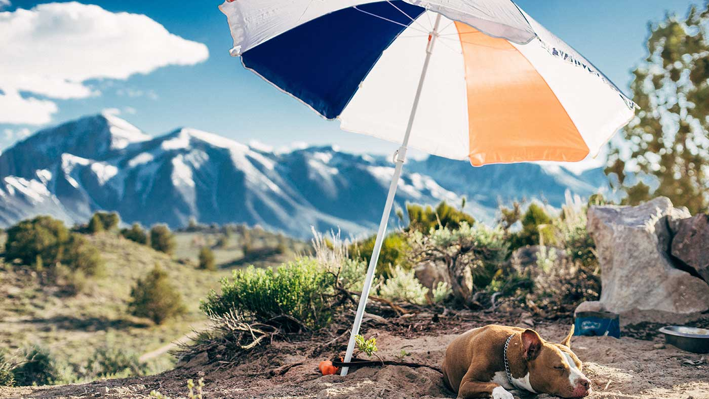 Guide to Patio Umbrellas & Repair Parts