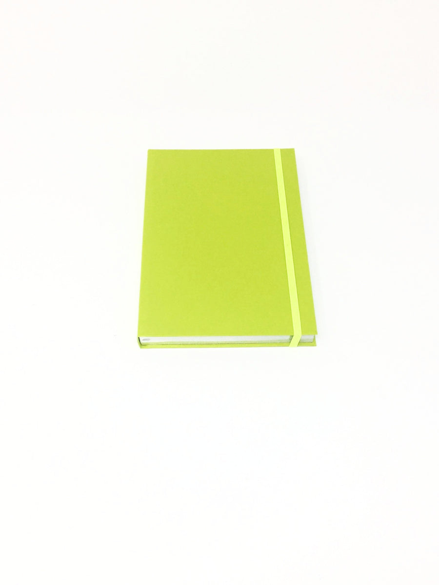 Giemme Box notebook - apple green.  Lined pages with silver border