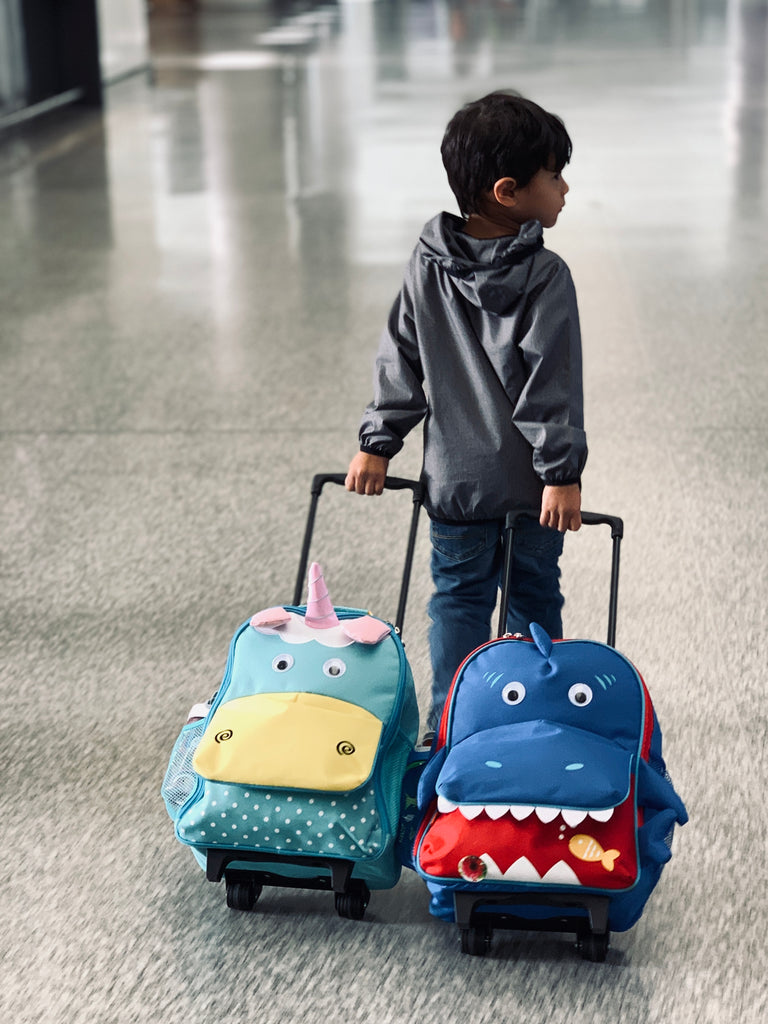 10 Things to Pack in Your Toddler's Carry On Bag