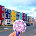bright houses behind baby cats pin button