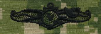 Type III Warfare Devices & Breast Insignia Enlisted