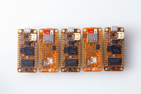 Orange Crabs with SD Cards front and back