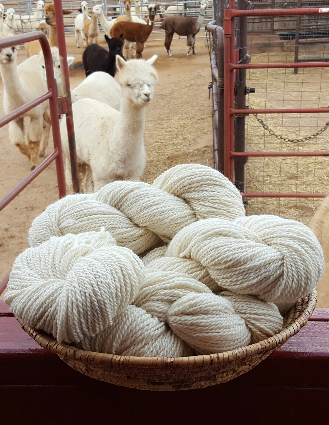 Alpaca Yarn - White
