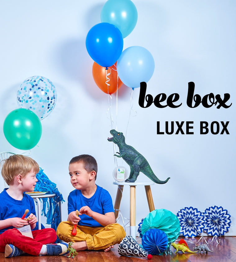 bee box luxe box themed party ware printables decorations favour supplies