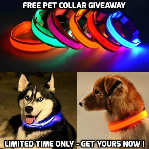 FREE SAFETY LED COLLAR FOR DOG & CAT
