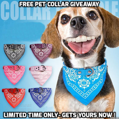 Free Stylish Leather Collar for Dog & Cat